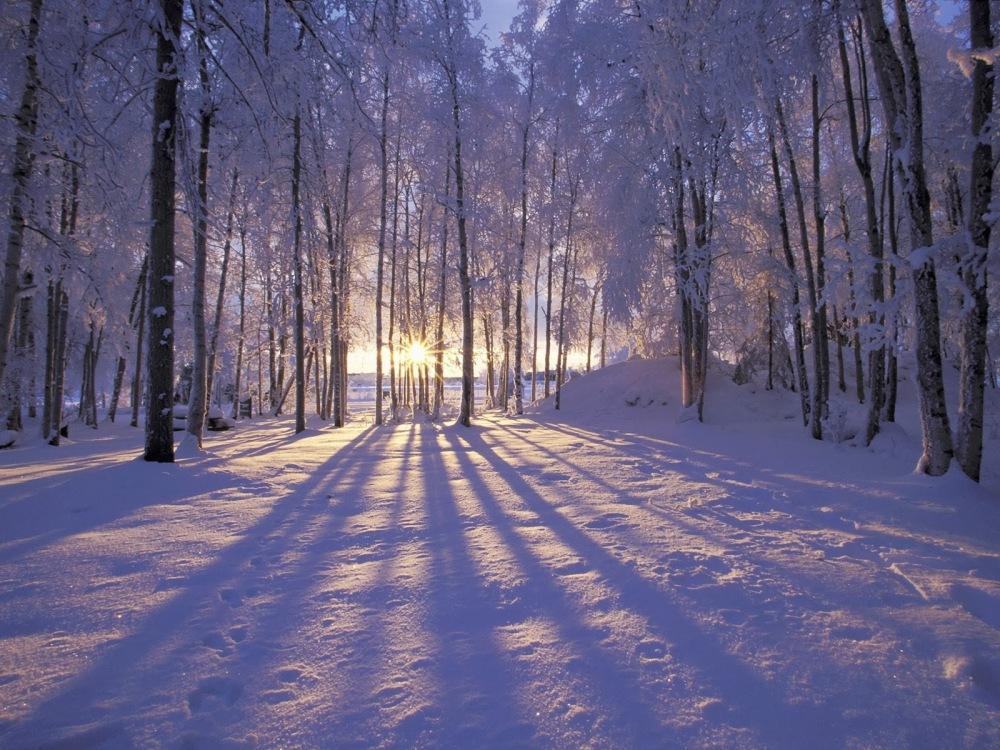 Source: http://astrangelyisolatedplace.com/2011/01/12/ollis-arctic-circle/